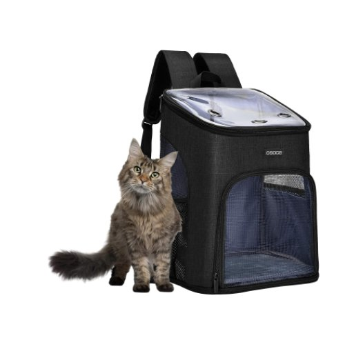 Pet Carrier Backpack for $14.99 Shipped! (Reg. Price $29.99)
